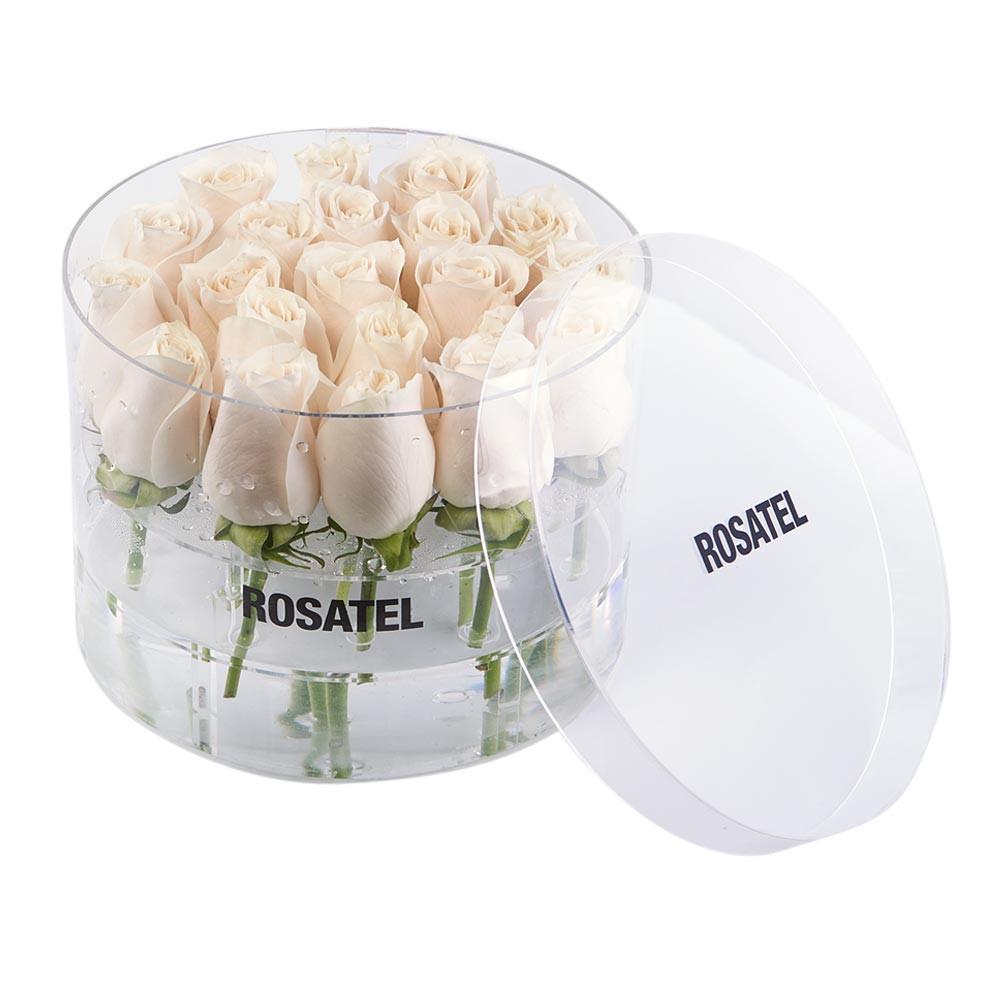 Caja Acrílica Redonda con 21 Rosas Cremas Recuerdos Rosatel