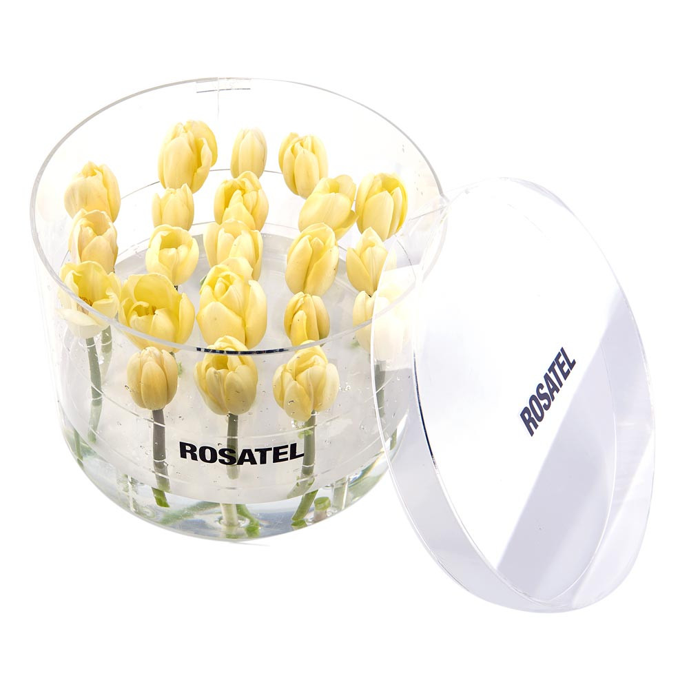 Caja Acrílica Redonda con 21 Tulipanes Blancos Recuerdos Rosatel