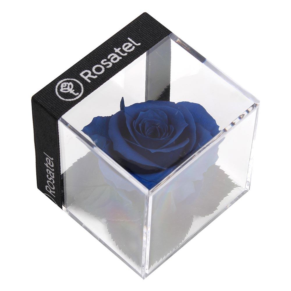 Rosa Preservada en Cubo Recuerdos by Rosatel