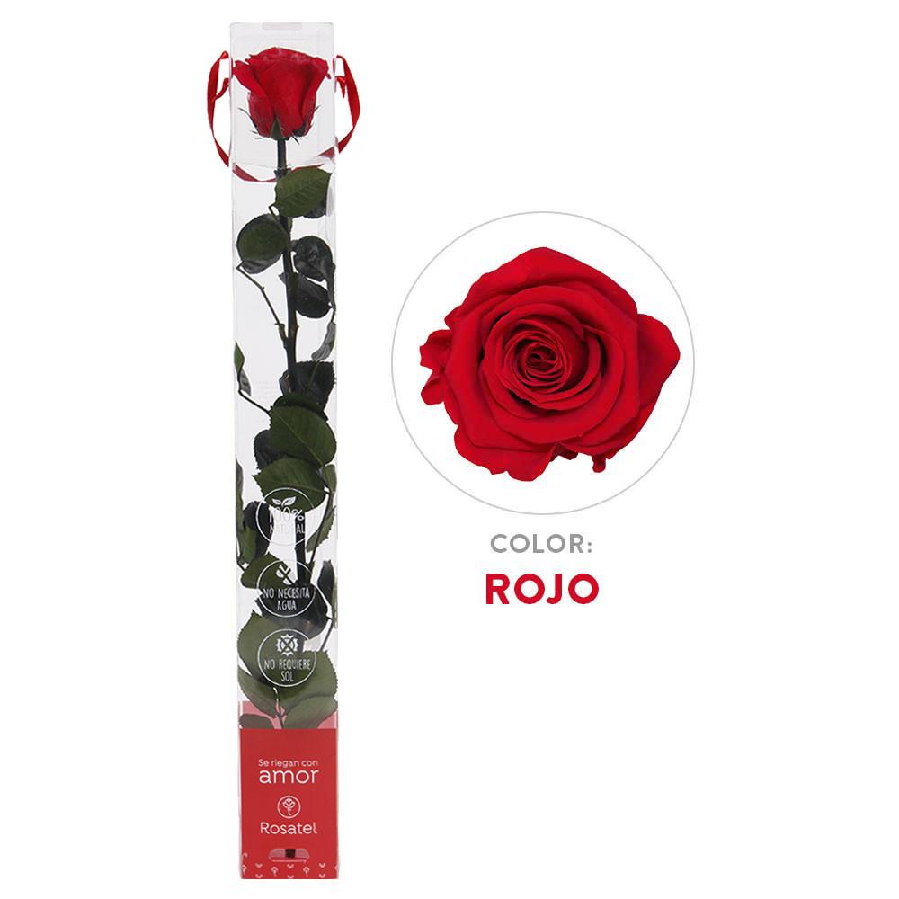 Rosa Roja Preservada 100% Natural Recuerdos Rosatel Lima