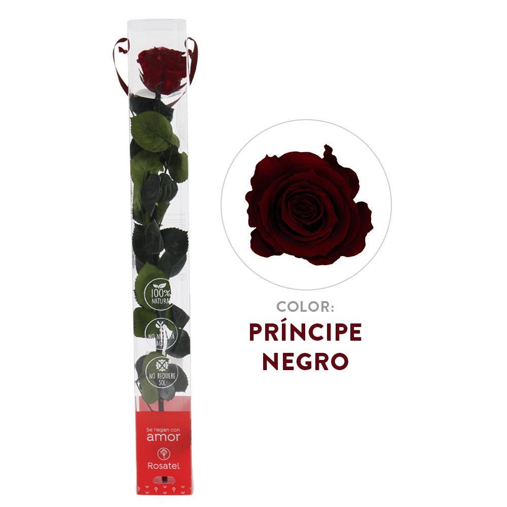 Rosa Príncipe Negro Preservada 100% Natural Recuerdos Rosatel Lima
